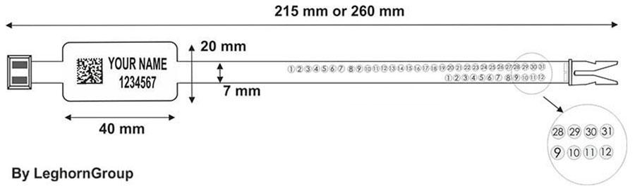 sigilli plastica ringlabel seal 215 mm 260 mm disegno tecnico